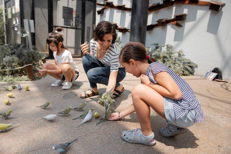 Jakie czynniki są ważne przy wyborze obuwia dla dzieci?